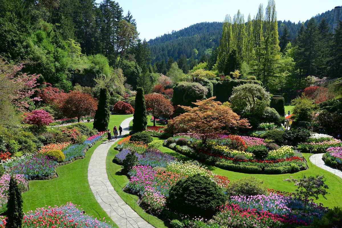 Vancouver and Victoria Garden and Nature Tour with Cole Burrell